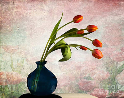 Orchid Digital Art - Tulips 6 by Mark Ashkenazi