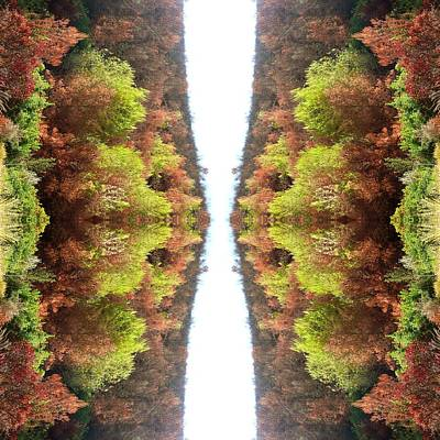 Abstract Digital Photograph - Unnatural 77 by Giovanni Cafagna