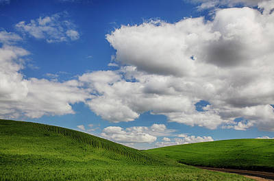 Usa, Washington State, Palouse Country Print by Terry Eggers