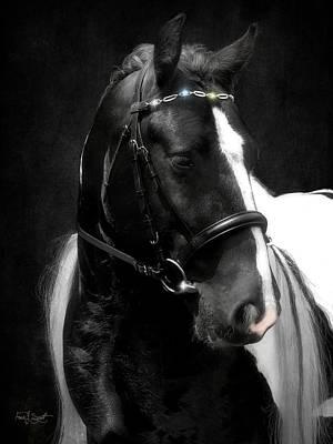 Photograph - Valentino's Bling by Fran J Scott