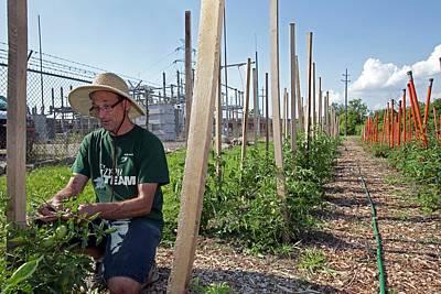 Volunteer In A Community Garden Print by Jim West