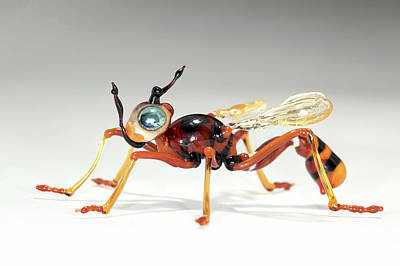 Glass Blowing Photograph - Wasp by Tomasz Litwin