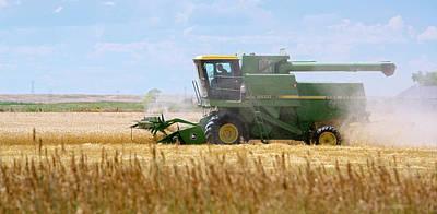 Wheat Harvest Print by Jim West