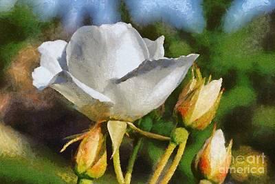 Macro Painting - White Rose by George Atsametakis
