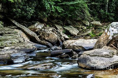 Williams River Rocks Print by Thomas R Fletcher
