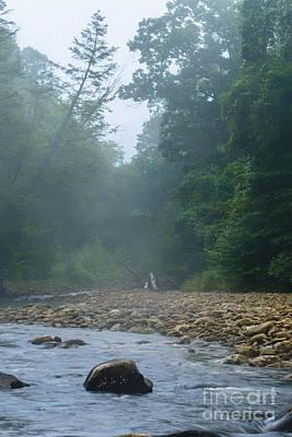 Williams River Summer Mist Print by Thomas R Fletcher