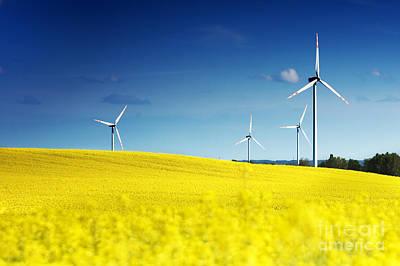 Plant Photograph - Wind Turbines. by Michal Bednarek