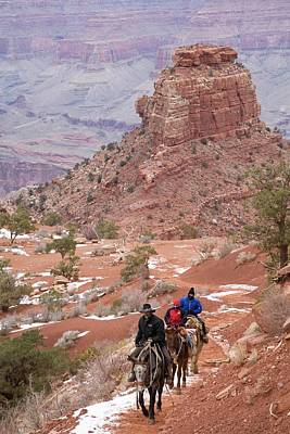 Parks Holidays Photograph - Winter Mule Train In The Grand Canyon by Jim West