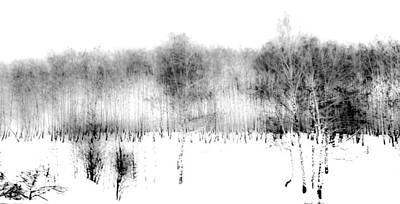 Winter Painting II. Ink Drawing By Nature Print by Jenny Rainbow