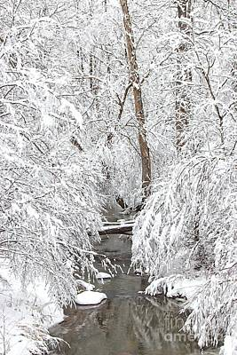 Snow-covered Landscape Photograph - Winter Wonderland by Benanne Stiens