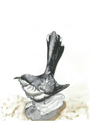 Cuckoo Mixed Media - Yellow Billed Cuckoo by Gregory Ellis