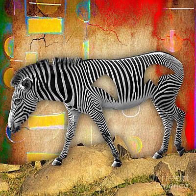 Zebra Mixed Media - Zebra Collection by Marvin Blaine