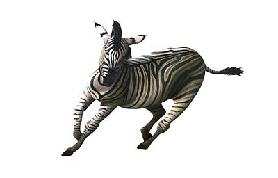 Zebra Photograph - Zebra Galloping by Mark Garlick