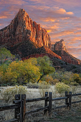 Fence Posts Photograph - Zion National Park by Utah Images