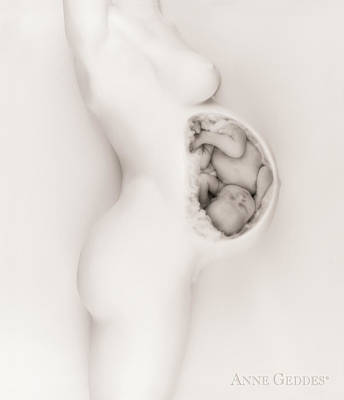 Motherhood Photograph - Untitled by Anne Geddes