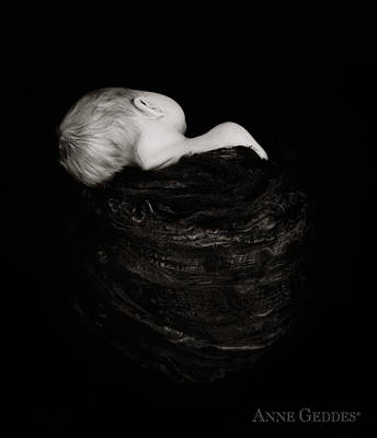 Sleeping Photograph - Untitled by Anne Geddes
