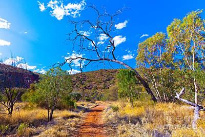 Serpentine Photograph - Serpentine Gorge Central Australia by Bill  Robinson