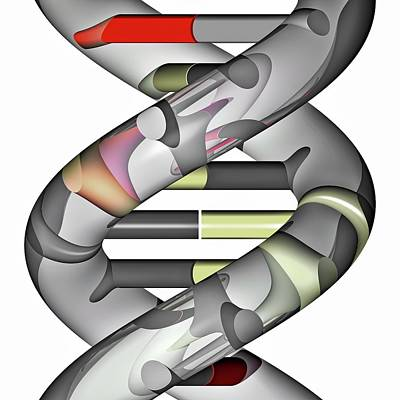 Helical Photograph - Dna Molecule by Russell Kightley