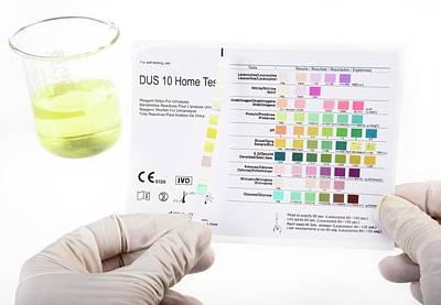 Urine Photograph - Home Urine Test by Cordelia Molloy