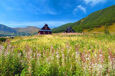 Grass Photograph - Mountains Landscape by Michal Bednarek