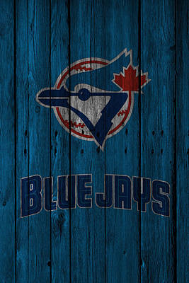 Blue Jay Photograph - Toronto Blue Jays by Joe Hamilton