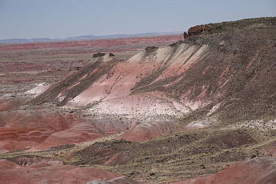 Painted Desert Print by Frank Romeo