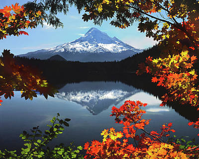 Usa, Oregon, Mt Hood National Forest Print by Jaynes Gallery