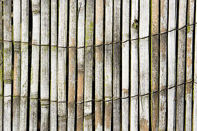 Bamboo Fence Photograph - Wood Background by Tom Gowanlock