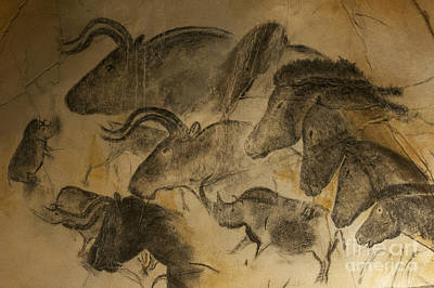 Prehistoric Photograph - 131018p051 by Arterra Picture Library