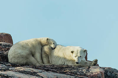 Canada, Nunavut Territory, Repulse Bay Print by Paul Souders