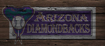 Diamondback Photograph - Arizona Diamondbacks by Joe Hamilton