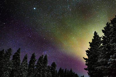 Idea Photograph - Aurora Borealis Or Northern Lights by Panoramic Images