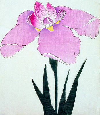 Irises Painting - Japanese Flower by Japanese School