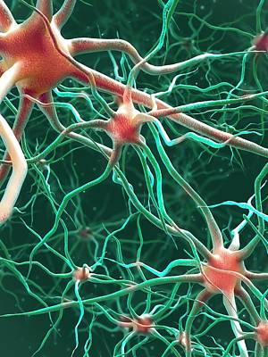Neural Network Print by Maurizio De Angelis