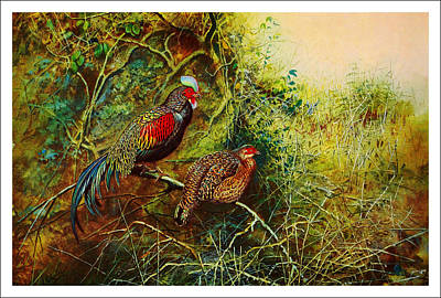 Birds Painting - The Pheasands by Celestial Images