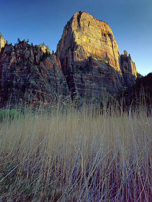 Large Format Photograph - Zion National Park, Utah by Scott T. Smith