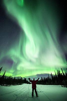 Observer Photograph - Aurora Borealis In Alaska by Chris Madeley