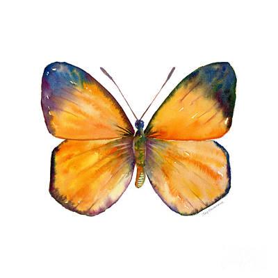 19 Delias Anuna Butterfly Original by Amy Kirkpatrick