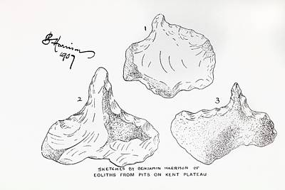 Wrong Photograph - 1907 Harrison Eolith Dawn Stone Tool by Paul D Stewart