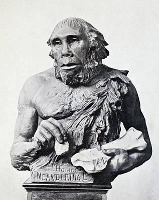 Reconstruction Photograph - 1916 First 3d Neanderthal Reconstruction by Paul D Stewart