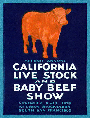 Steer Painting - 1929 California Beef by Historic Image