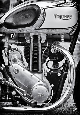 1936 Triumph Tiger 80 Monochrome Print by Tim Gainey