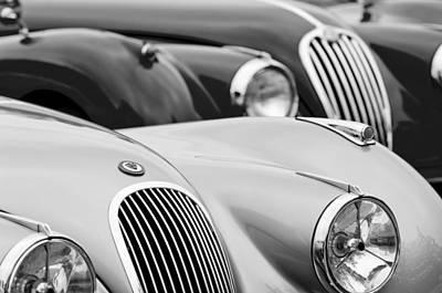 1950 Jaguar Xk120 Roadster Grille 2 Print by Jill Reger