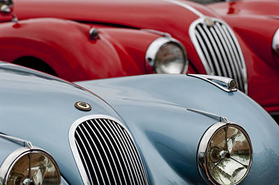 1950 Jaguar Xk120 Roadsters -1366c Print by Jill Reger