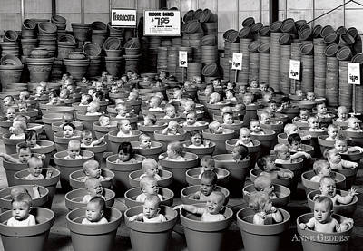 Beauty Photograph - 123 Pots by Anne Geddes