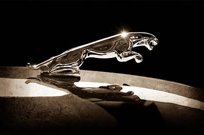 1961 Jaguar Kougar Hood Ornament Print by Jill Reger