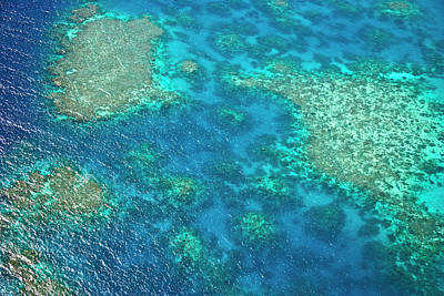 Aerial View Of The Great Barrier Reef Print by Miva Stock