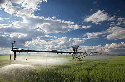 Luis Photograph - Agricultural Irrigation System by Jim West