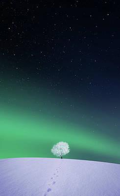 Eternity Photograph - Apple by Bess Hamiti