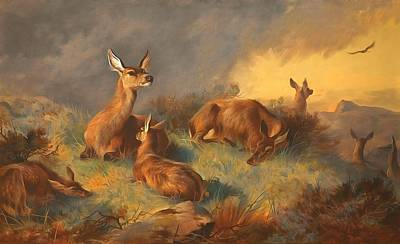 Hind Painting - The Watchful Hinds Deer by Archibald Thorburn